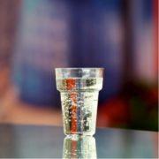 Beerglass Jungle 8.8.oz